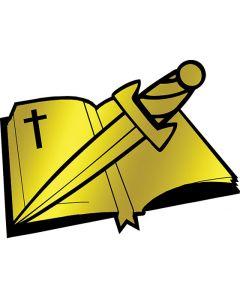 Bible/Sword Pin Award