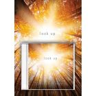Look Up - Director's Preview Kit (Book/CD)
